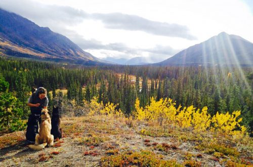 Yukon in Kanada - Reise mit Workaway, Housesitting und Couchsurfing